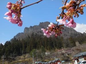 道の駅みょうぎから眺めた妙義山(H29.3.22撮影)